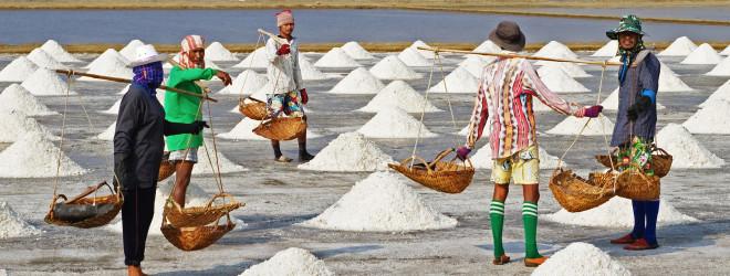 Let them eat salt!