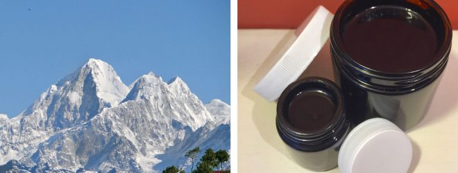 Shilajit: a remedy for all times