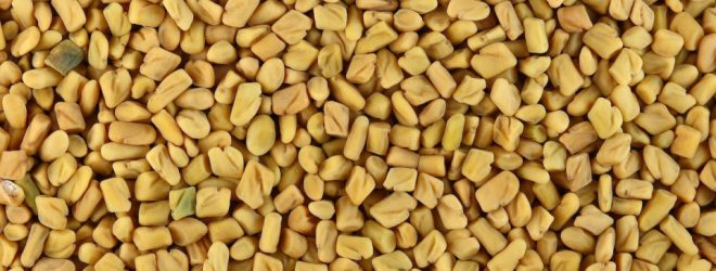 Fenugreek for blood sugar